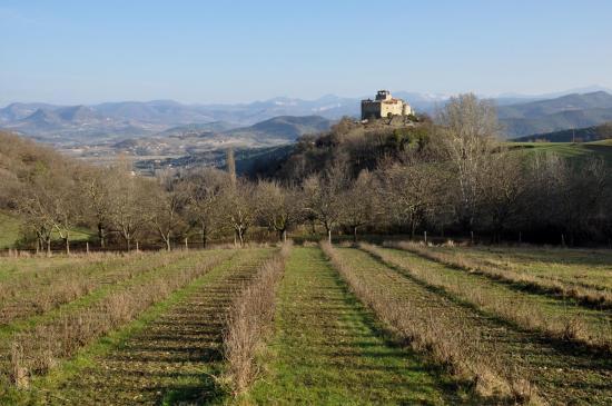 Le château de Piégros vue de la montée à Faucon