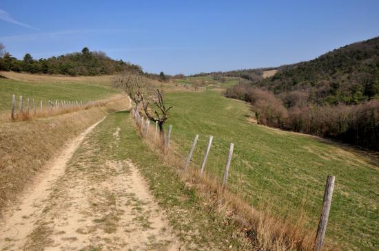 Remontée du vallon de la Lozière