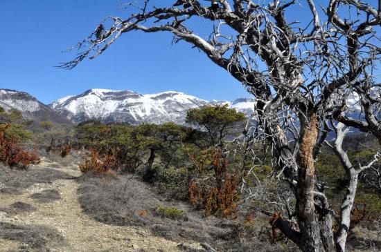 Sur le fil de la crête entre les cols de Vachères n°1 et de St Andéol