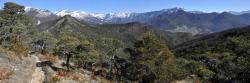 Sur la crête entre les cols de Vachères et St Andéol