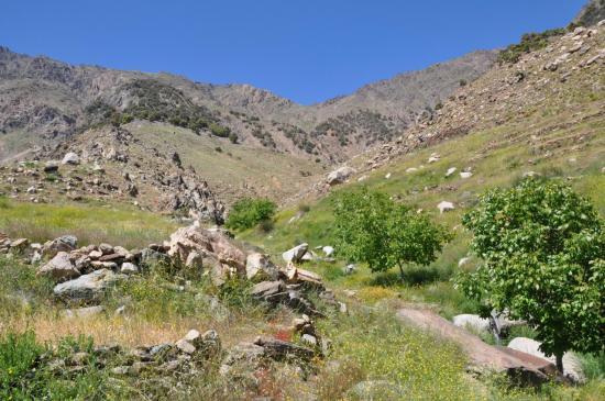 L'emplacement de bivouac sous le tizi n'Targa