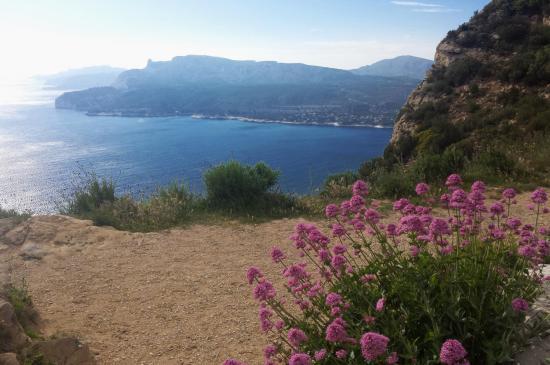 Vue sur la baie de Cassis depuis la Route des Crêtes
