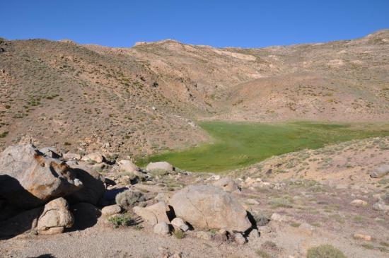 Les sources du Nfis (Plateau du Tichka)