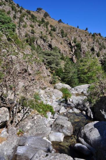 A proximité de la bergerie de Cabane