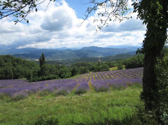 Depuis les hauts de Piégros, large vue sur le sud du Vercors
