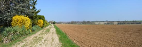 Les champs autour de Claye-Souilly