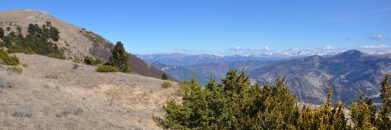 Serre Délègue (montagne de Couspeau)