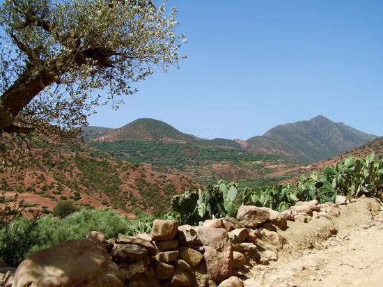 La montée depuis Arba Tighedouine