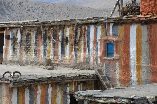 Rigzum Gonpo à Choekker et la maison est bien protégée...
