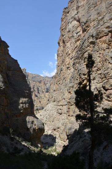 Dans les gorges de la Syangmoche khola