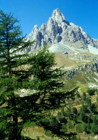 La Main de Crépin (Haute vallée de la Clarée)