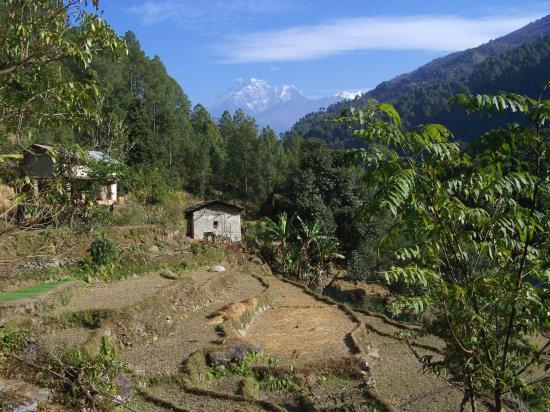 La campagne népalaise avec le Gaurisankar et le Melungtse