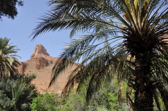 Dans les gorges d'Ait Mansour