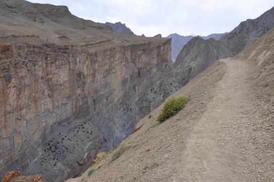 Les falaises de Snertse