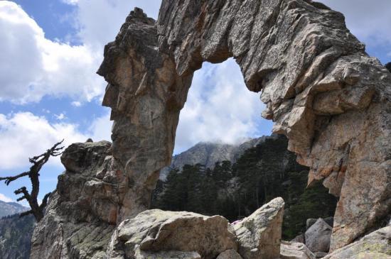 L'arche de Corti