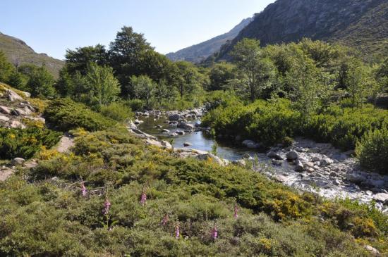 La vallée du Tavignano