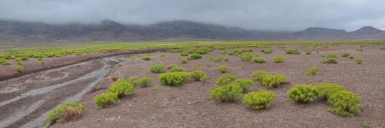 Entre le tizi n'Tirrhist et le lac Isli