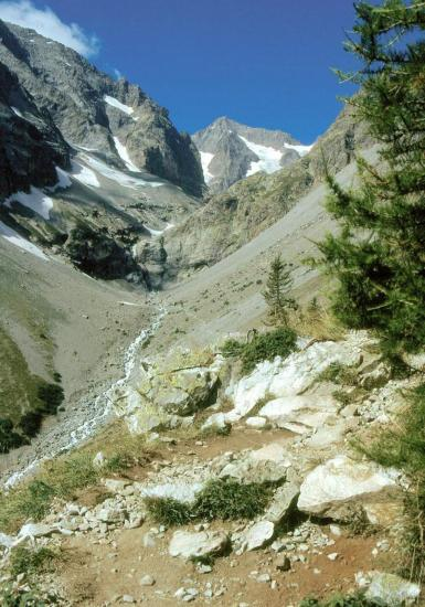 Le vallon de Celse-Nière