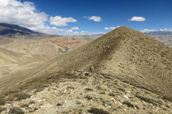 Seule sur les crêtes face à l'immensité des paysages du Mustang