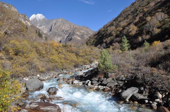 Dans le vallon de la Yulung khola