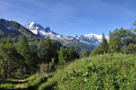 Aiguille Verte et Mont-Blanc depuis le sentier de montée à l'Aiguillette des Posettes
