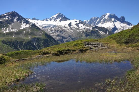 Glaciers des Grands et du Tour vus depuis l'Aiguillette des Posettes