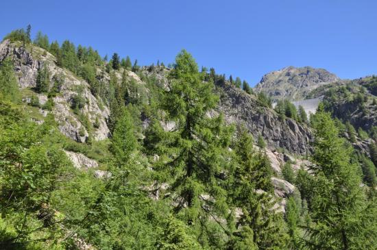Au cours de la montée vers le lac d'Emosson par le vallon de Barberine