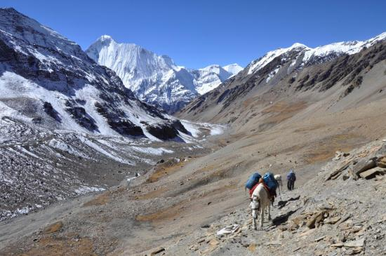 A l'arrière, l'enfilade de la haute vallée de la Mu khola et la chaîne du Dhaulagiri himal