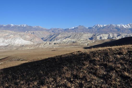 Sur le monticule entre les alpages de Panga et de Lo Monthang