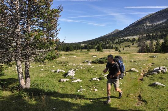 Sur les Hauts Plateaux entre la Jasse du Play et la Grande Cabane