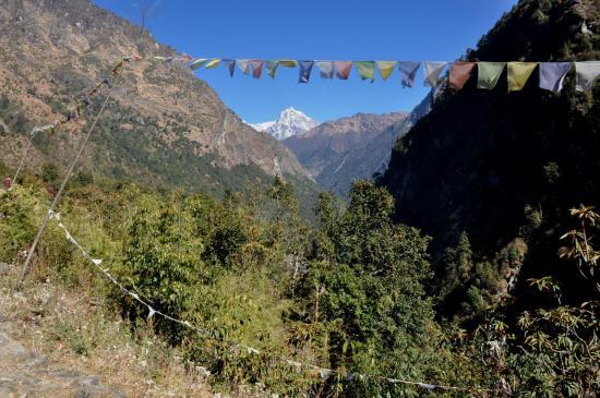 La vallée de la Ghunsa khola depuis le lodge de Gyabla