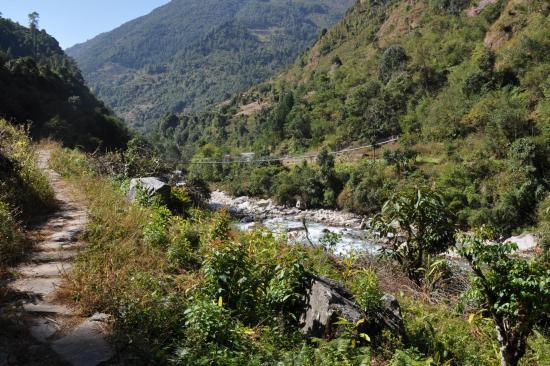 La végétation tropicale à l'approche de Sukethum