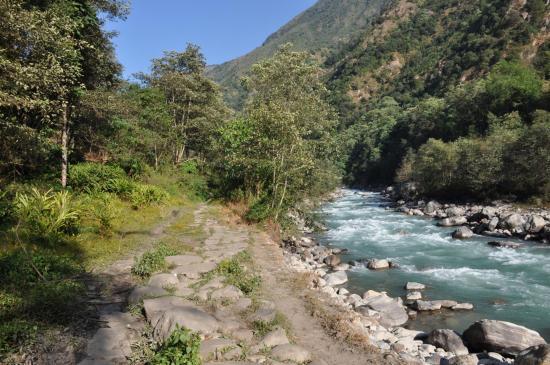 Le long de la Tamur khola juste avant d'arriver à Tapletok