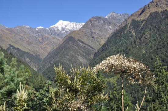 Sur les crêtes du Bharbhare Lagna, le Mata Tumba