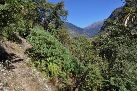 Arrivée au Dhupi bhanjyang