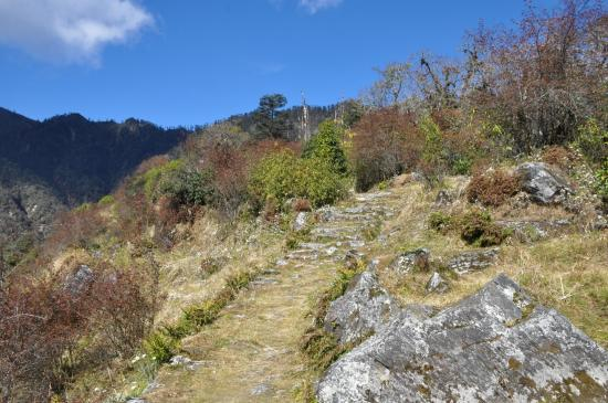 Entre le camp de l'Omje khola et le Lasiya bhanjyang
