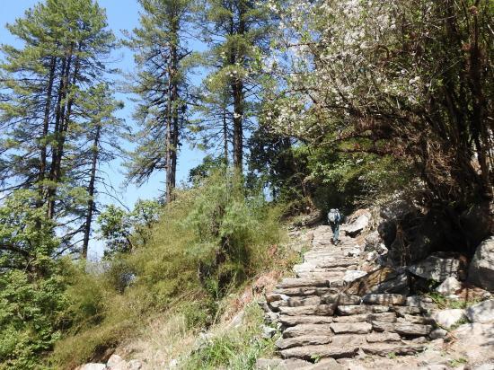 Entre Rimche et Sherpagaon