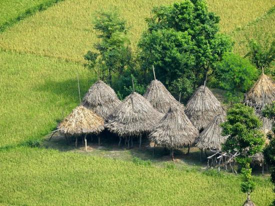 Vue plongeante sur le rizières du côté de Manthali