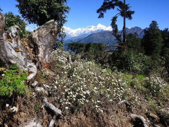 Sur la crête entre Goli gompa et Ngawar