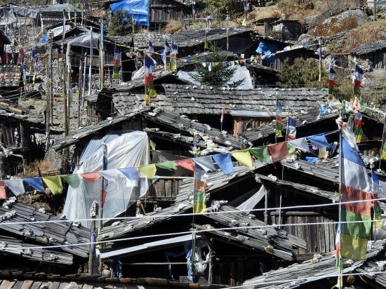 Les maisons en bois d'Olangchun Gola