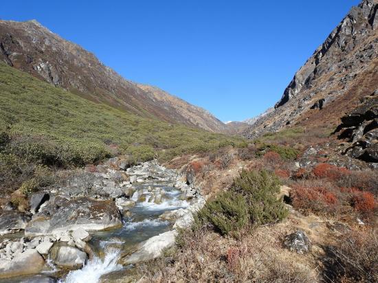 Sanjung kharka dans la vallée de la Dingsamba khola
