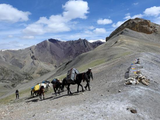 Arrivée de la caravane au Chagstang La