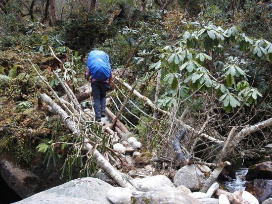Le petit pont de bois (qui ne tenait plus guère...) sur la Saldim khola