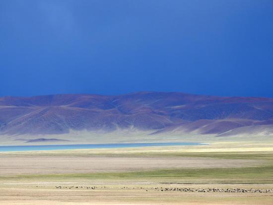 Descente vers le plateau des Kyun tso alors que l'orage approche (couleurs irréelles bien que réelles...)