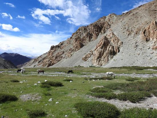 A mi-chemin de la descente de la vallée de la Changlung togpo