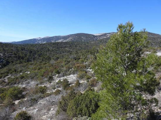 La Sainte Baume vue depuis le GR9 lors du contournement de la propriété de Font Mauresque