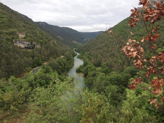 En remontant la rive gauche du Tarn