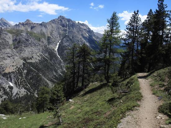 Retour vers la vallée en forêt face au sommet de Giau