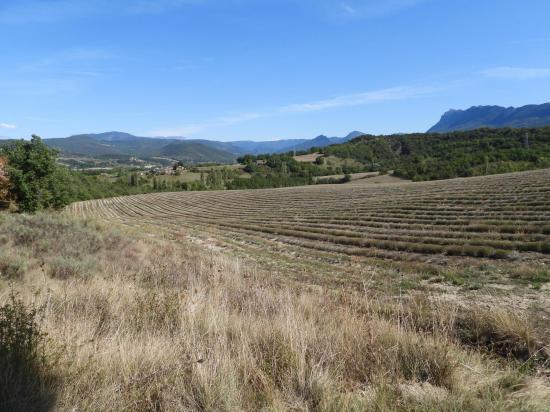 Panorama vers l'E depuis la ferme de Rattier