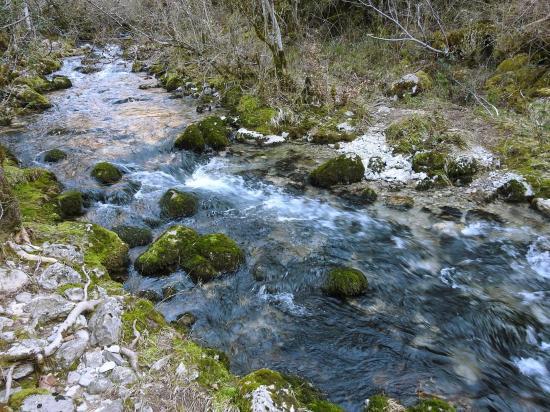 Le long du ruisseau d'Aucelon